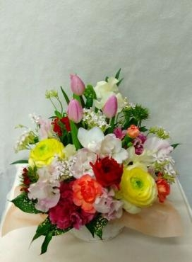 春の花々いっぱいの…